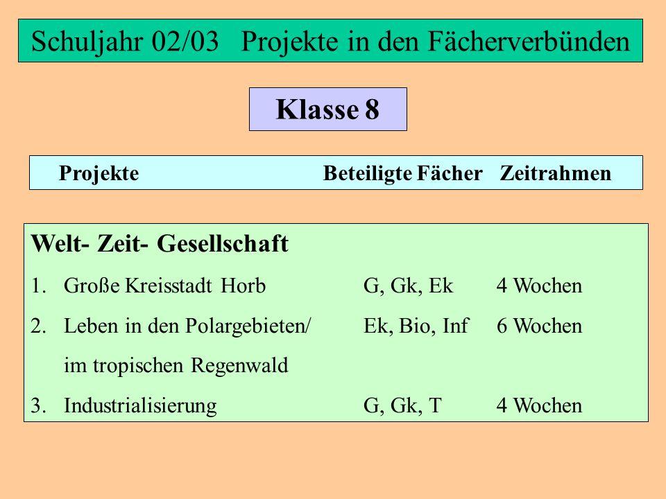 Schuljahr 02/03 Projekte in den Fächerverbünden Klasse 8 Projekte Beteiligte Fächer Zeitrahmen Materie- Natur- Technik Im Fächerverbund wurden keine P