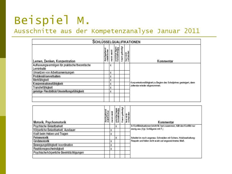 Beispiel M. Ausschnitte aus der Kompetenzanalyse Januar 2011
