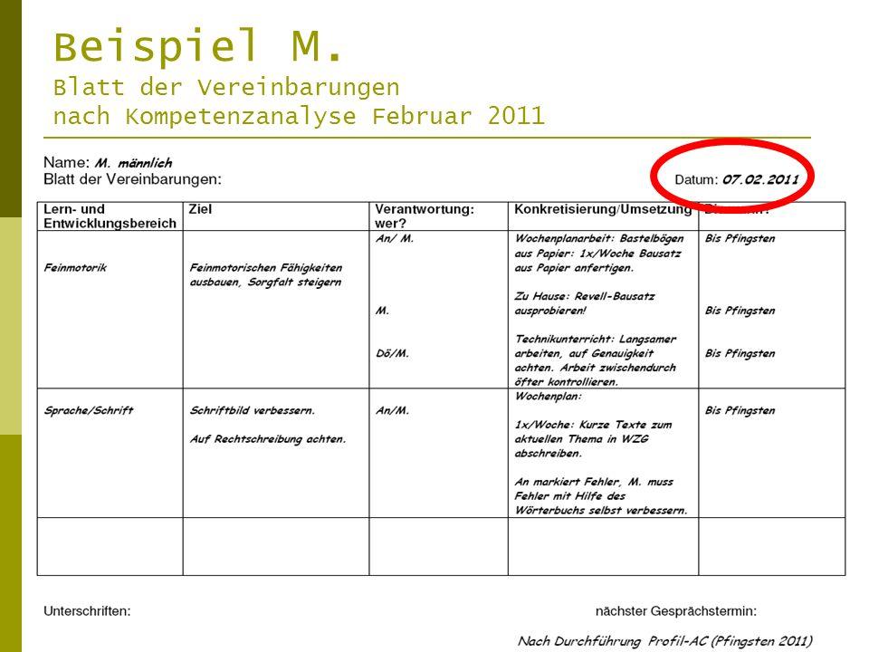 Beispiel M. Blatt der Vereinbarungen nach Kompetenzanalyse Februar 2011