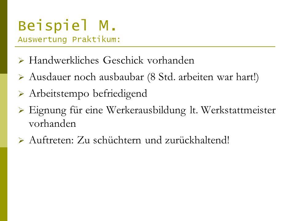Beispiel M.Auswertung Praktikum: Handwerkliches Geschick vorhanden Ausdauer noch ausbaubar (8 Std.