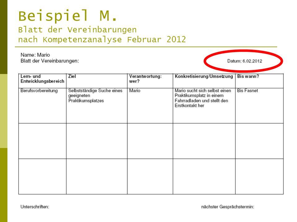 Beispiel M. Blatt der Vereinbarungen nach Kompetenzanalyse Februar 2012