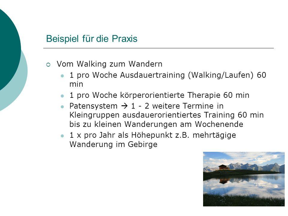 Beispiel für die Praxis Vom Walking zum Wandern 1 pro Woche Ausdauertraining (Walking/Laufen) 60 min 1 pro Woche körperorientierte Therapie 60 min Pat