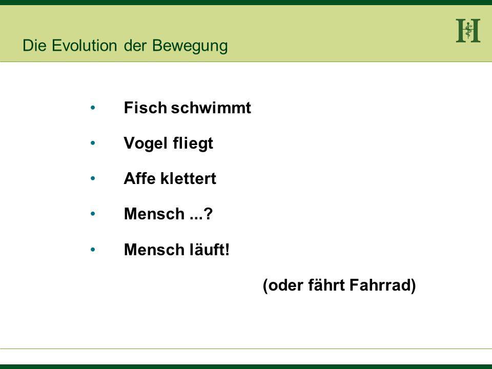 Lehrbuch-Präsenz Möller-Laux- Kapfhammer Lehrbuch der Psychiatrie und Psychotherapie Kapitel 36: Ergotherapie, Kreativtherapie, Sport- und Bewegungstherapie C.