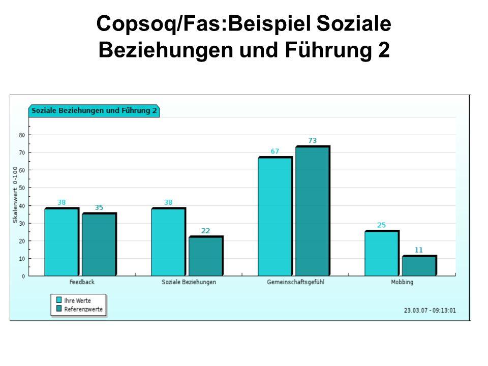 Copsoq/Fas:Beispiel Soziale Beziehungen und Führung 2