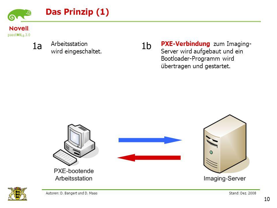 paed M L ® 3.0 Stand: Dez.2008 10 Autoren: D. Bangert und D.