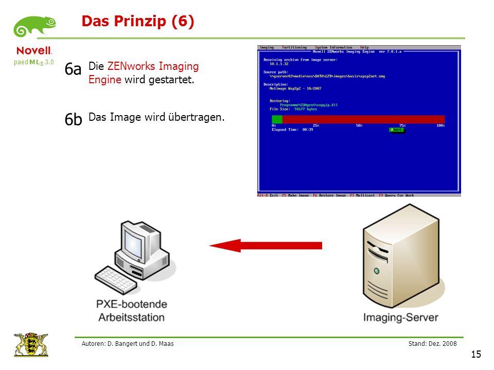 paed M L ® 3.0 Stand: Dez.2008 15 Autoren: D. Bangert und D.