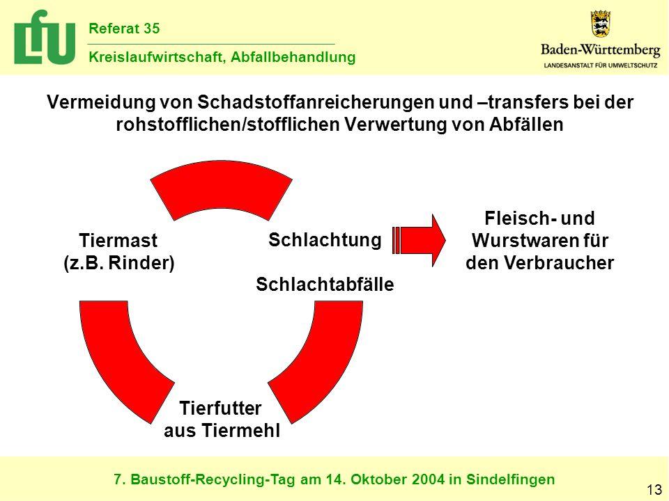 7. Baustoff-Recycling-Tag am 14. Oktober 2004 in Sindelfingen Referat 35 Kreislaufwirtschaft, Abfallbehandlung 13 Vermeidung von Schadstoffanreicherun