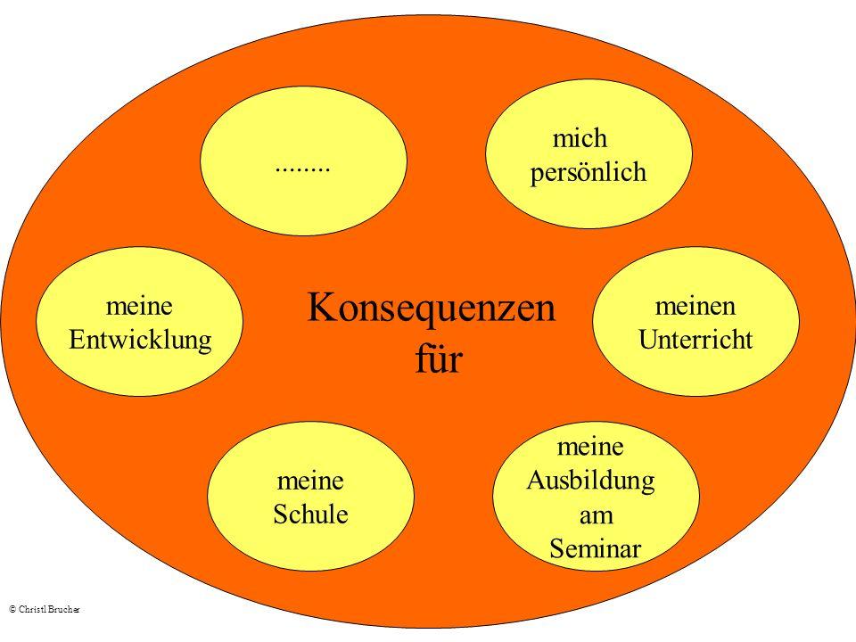 meine Entwicklung meine Schule........ meine Ausbildung am Seminar meinen Unterricht mich persönlich Konsequenzen für © Christl Brucher