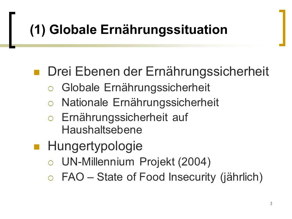 3 (1) Globale Ernährungssituation Drei Ebenen der Ernährungssicherheit Globale Ernährungssicherheit Nationale Ernährungssicherheit Ernährungssicherhei