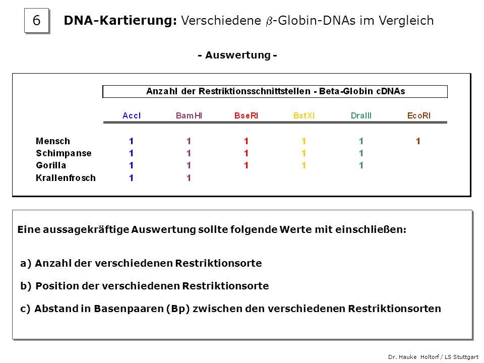 Dr. Hauke Holtorf / LS Stuttgart - Auswertung - Eine aussagekräftige Auswertung sollte folgende Werte mit einschließen: a) Anzahl der verschiedenen Re