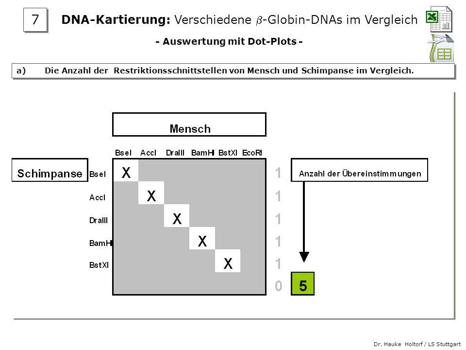 Dr. Hauke Holtorf / LS Stuttgart - Auswertung mit Dot-Plots - a) Die Anzahl der Restriktionsschnittstellen von Mensch und Schimpanse im Vergleich. DNA