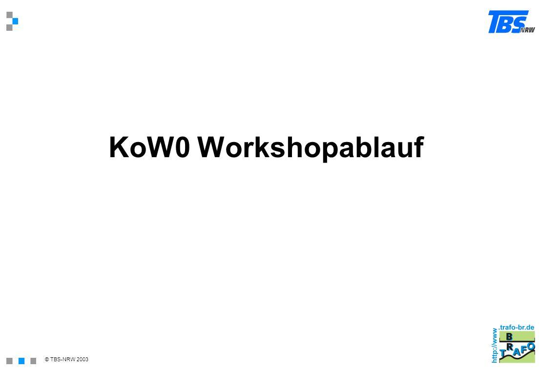 © TBS-NRW 2003 KoW0 Workshopablauf