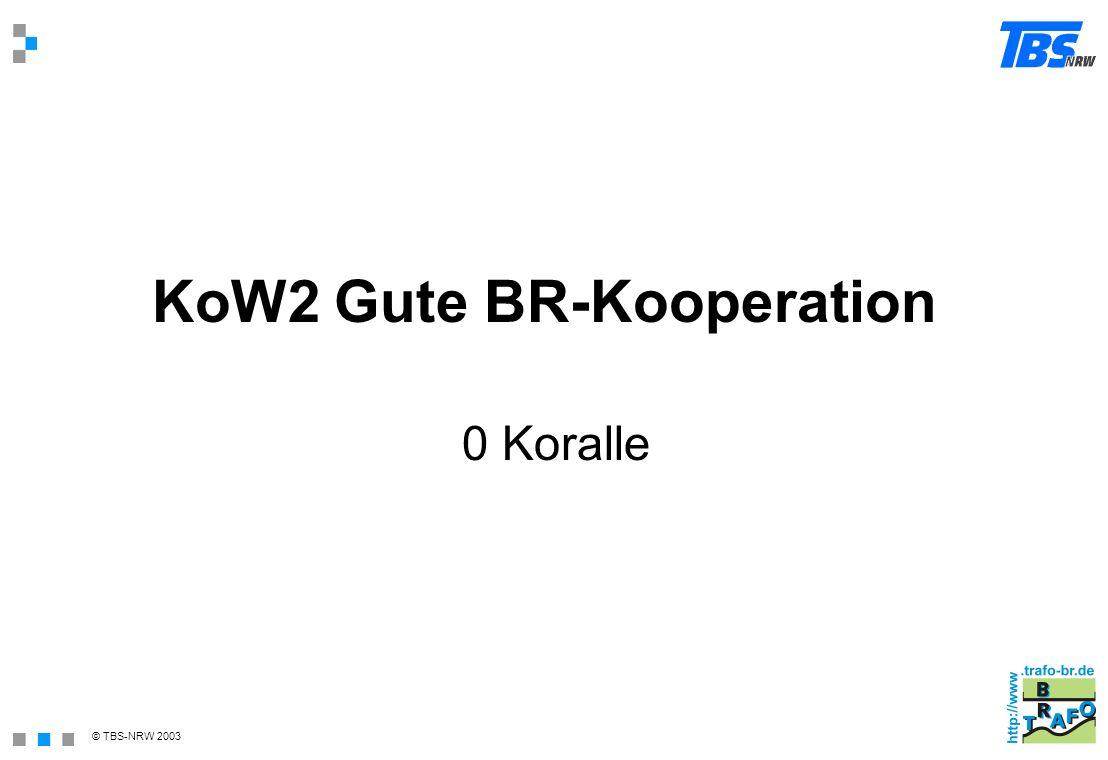 © TBS-NRW 2003 KoW2 Gute BR-Kooperation 0 Koralle