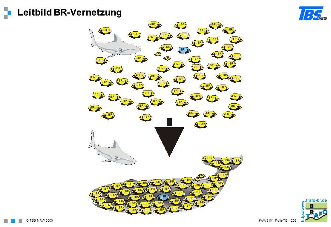 © TBS-NRW 2003 Leitbild BR-Vernetzung KoW3101; Folie TB_1205