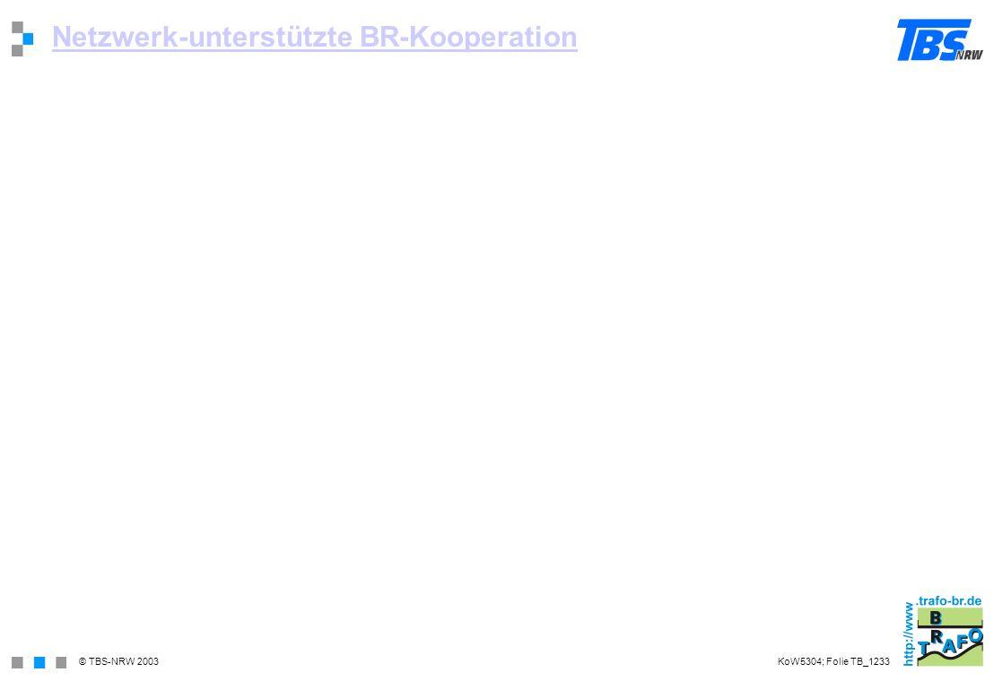 © TBS-NRW 2003 Netzwerk-unterstützte BR-Kooperation KoW5304; Folie TB_1233