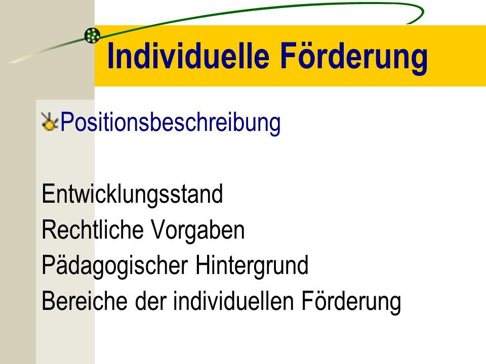 Individuelle Förderung Positionsbeschreibung Entwicklungsstand Rechtliche Vorgaben Pädagogischer Hintergrund Bereiche der individuellen Förderung