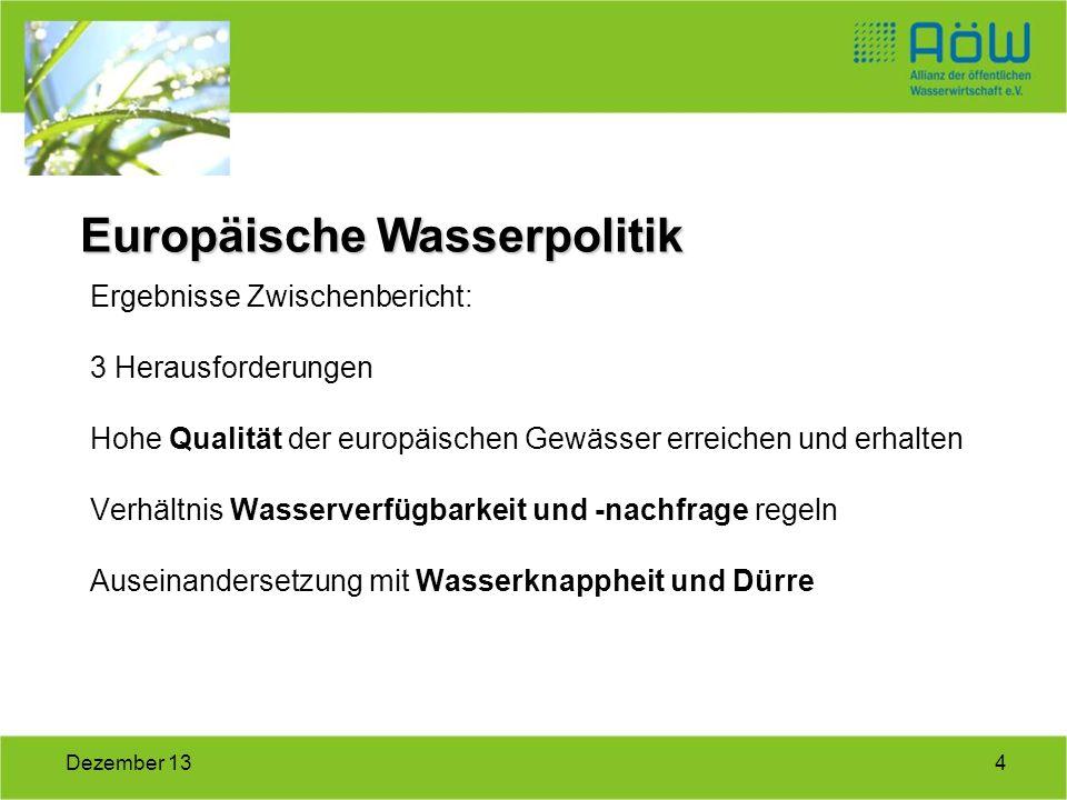 4Dezember 13 Ergebnisse Zwischenbericht: 3 Herausforderungen Hohe Qualität der europäischen Gewässer erreichen und erhalten Verhältnis Wasserverfügbar