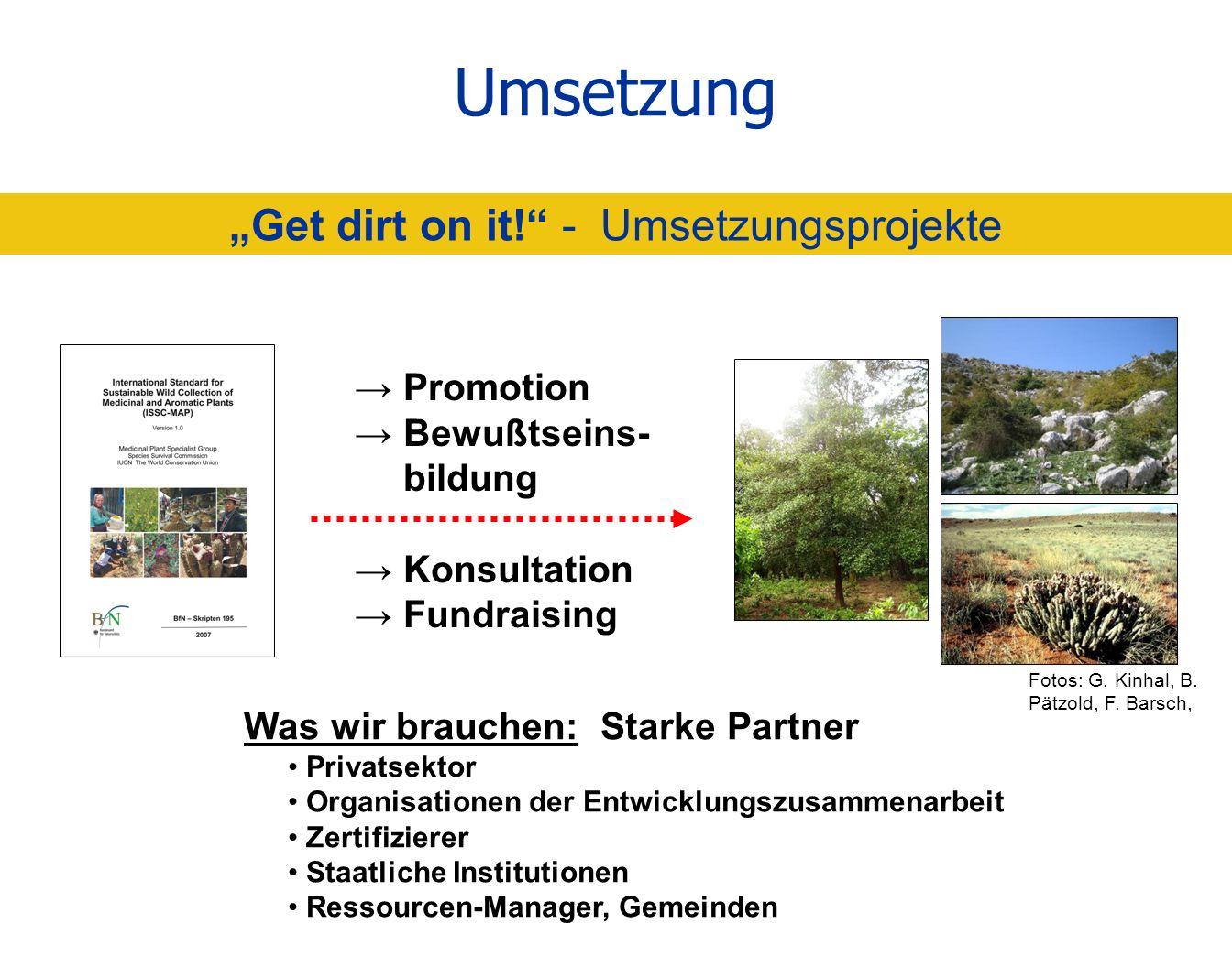 Umsetzung Get dirt on it! - Umsetzungsprojekte Promotion Bewußtseins- bildung Konsultation Fundraising Was wir brauchen: Starke Partner Privatsektor O
