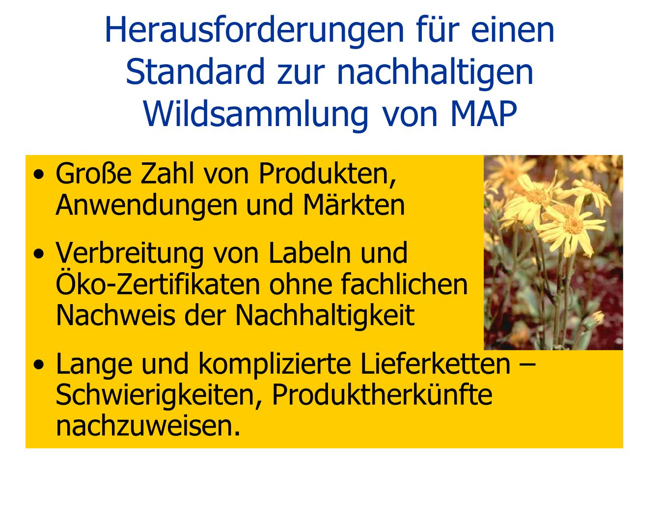 Herausforderungen für einen Standard zur nachhaltigen Wildsammlung von MAP Große Zahl von Produkten, Anwendungen und Märkten Verbreitung von Labeln un