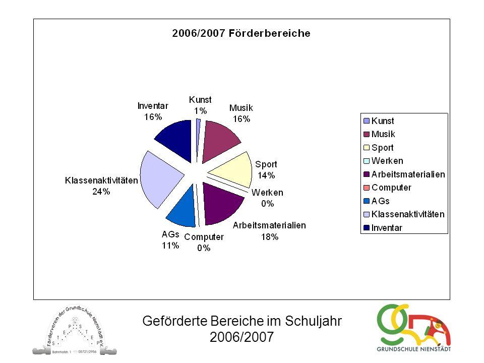 Geförderte Bereiche im Schuljahr 2006/2007
