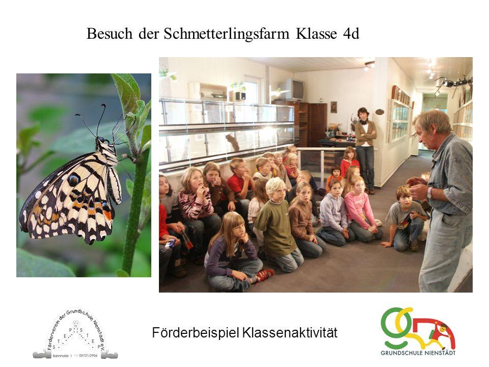 Förderbeispiel Klassenaktivität Besuch der Schmetterlingsfarm Klasse 4d