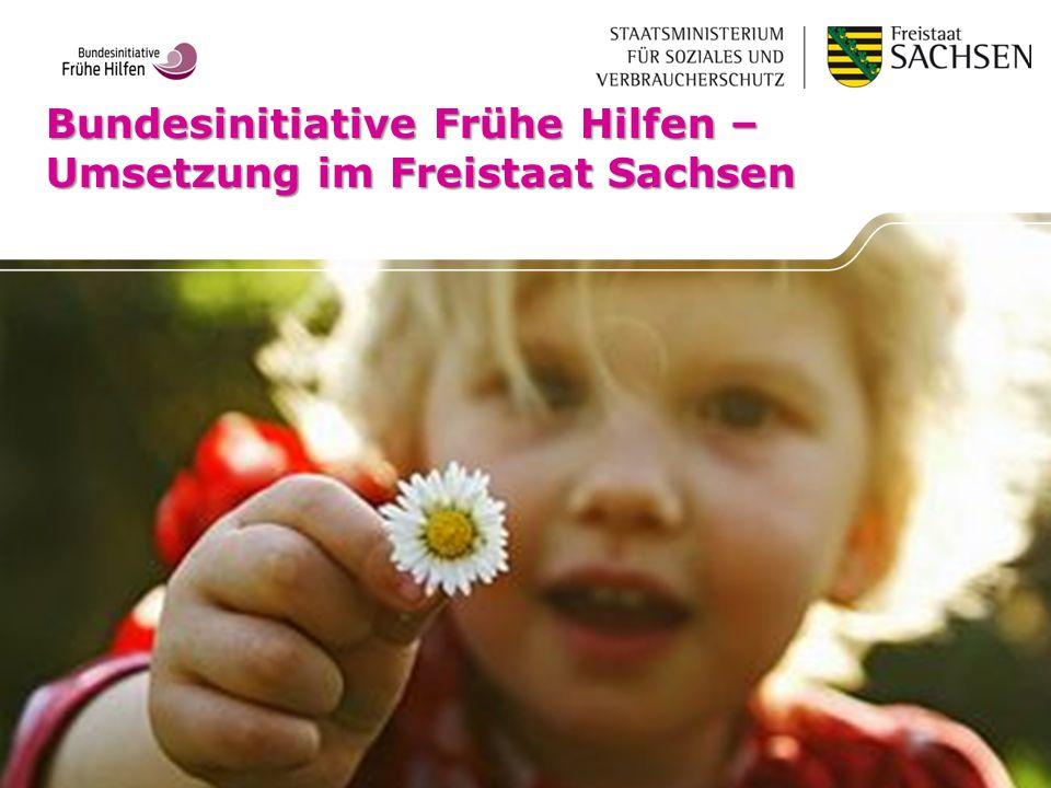Bundesinitiative Frühe Hilfen – Umsetzung im Freistaat Sachsen