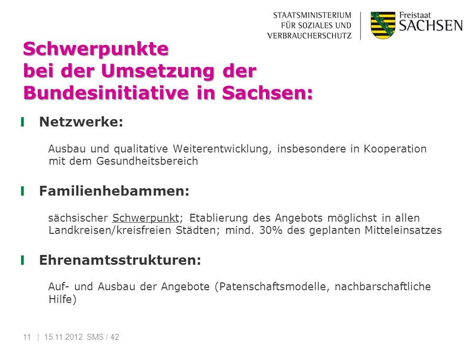 Schwerpunkte bei der Umsetzung der Bundesinitiative in Sachsen: Netzwerke: Ausbau und qualitative Weiterentwicklung, insbesondere in Kooperation mit d