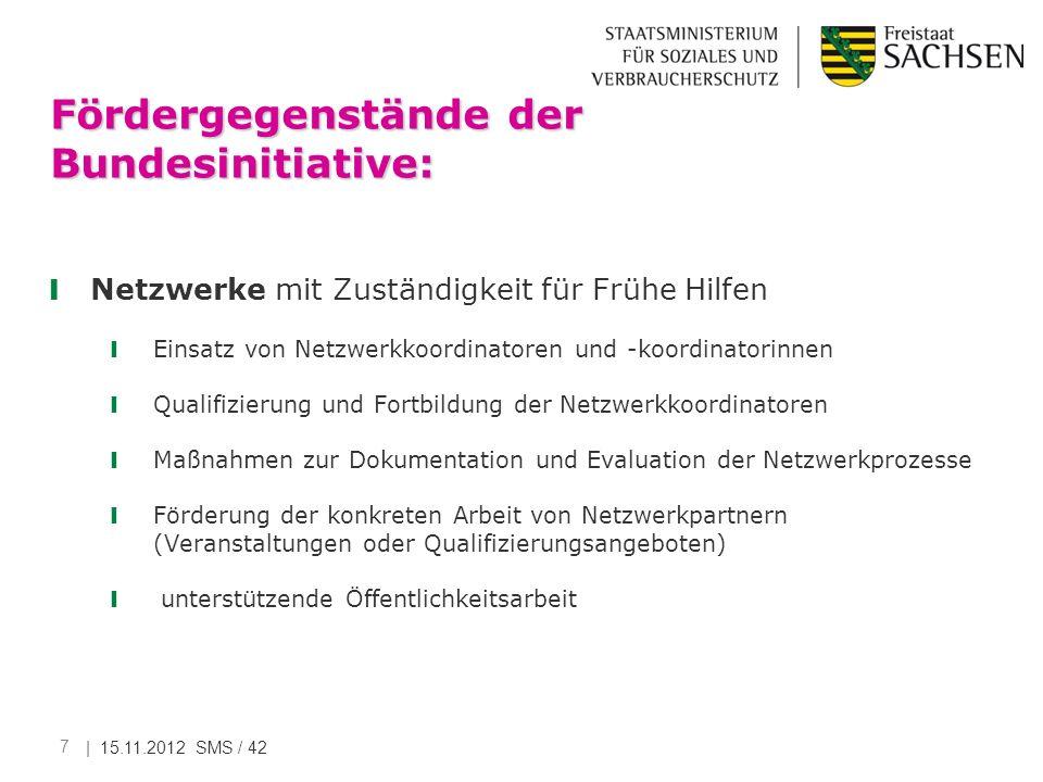 Fördergegenstände der Bundesinitiative: Netzwerke mit Zuständigkeit für Frühe Hilfen Einsatz von Netzwerkkoordinatoren und -koordinatorinnen Qualifizi