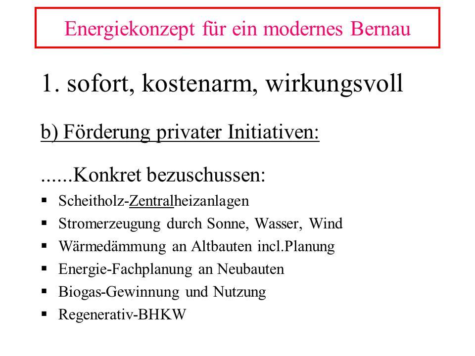 1. sofort, kostenarm, wirkungsvoll b) Förderung privater Initiativen:......Konkret bezuschussen: Scheitholz-Zentralheizanlagen Stromerzeugung durch So