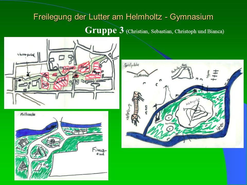 Freilegung der Lutter am Helmholtz - Gymnasium Gruppe 3 (Christian, Sebastian, Christoph und Bianca)