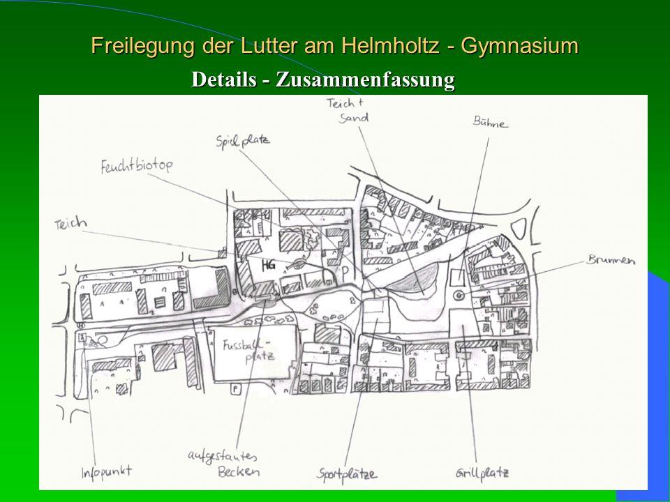 Freilegung der Lutter am Helmholtz - Gymnasium Details - Zusammenfassung