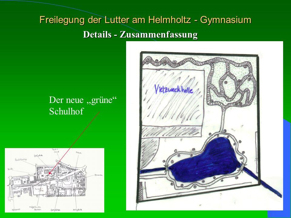 Freilegung der Lutter am Helmholtz - Gymnasium Details - Zusammenfassung Der neue grüne Schulhof