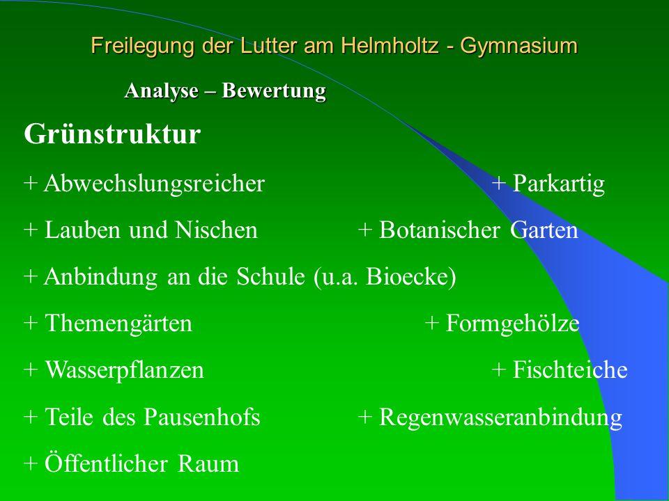 Freilegung der Lutter am Helmholtz - Gymnasium Analyse – Bewertung Grünstruktur + Abwechslungsreicher + Parkartig + Lauben und Nischen + Botanischer G