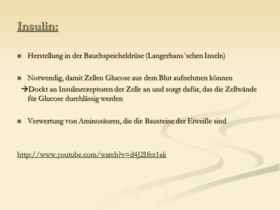 Insulin: Herstellung in der Bauchspeicheldrüse (Langerhans´schen Inseln) Herstellung in der Bauchspeicheldrüse (Langerhans´schen Inseln) Notwendig, da