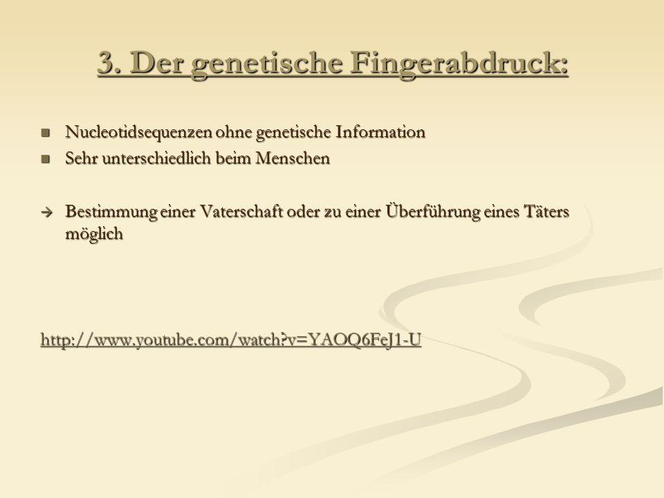 Polymerase – Kettenreaktion (PCR) http://www.sn.schule.de/~biologie/lernen/genetik/pcr.html Der DNA – Fingerprint: http://www.sn.schule.de/~biologie/lernen/genetik/finger.html#aus
