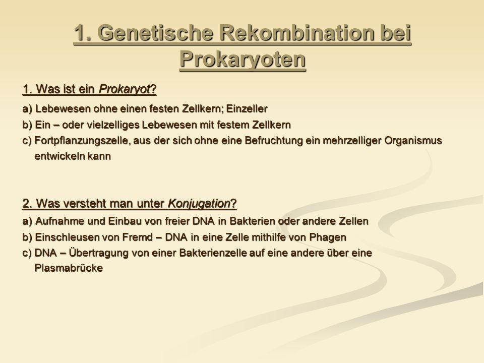 1. Genetische Rekombination bei Prokaryoten 1. Was ist ein Prokaryot? a) Lebewesen ohne einen festen Zellkern; Einzeller b) Ein – oder vielzelliges Le