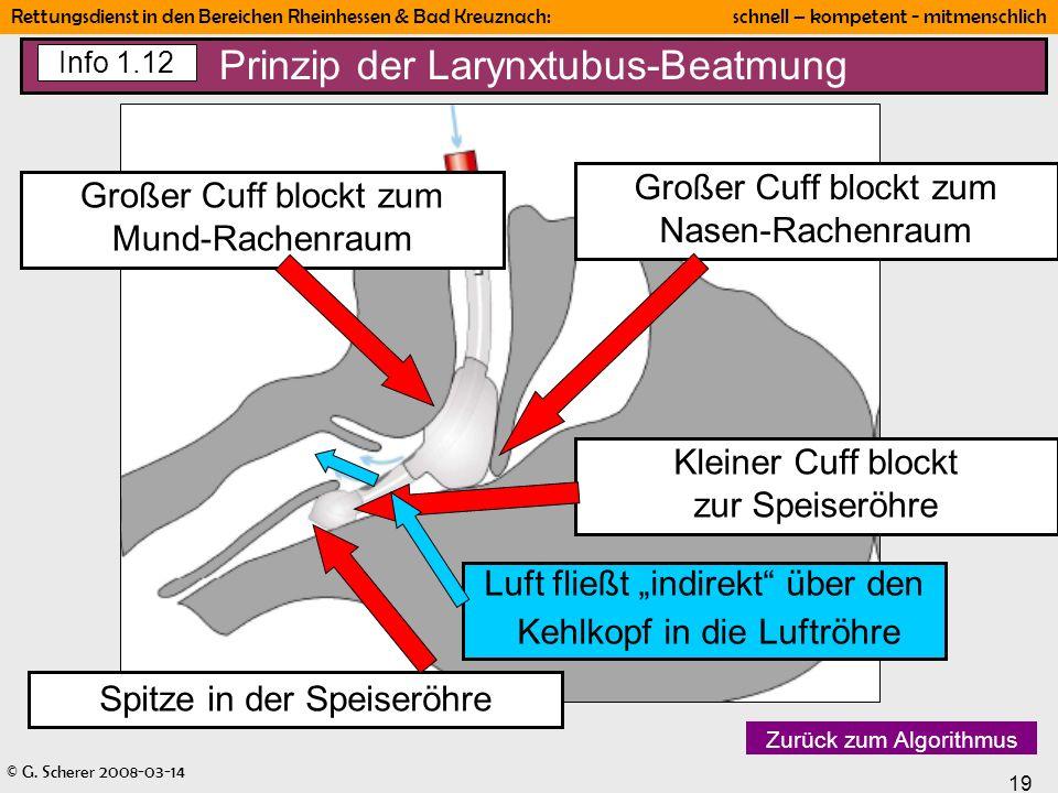 © G. Scherer 2008-03-14 19 Rettungsdienst in den Bereichen Rheinhessen & Bad Kreuznach: schnell – kompetent - mitmenschlich Prinzip der Larynxtubus-Be