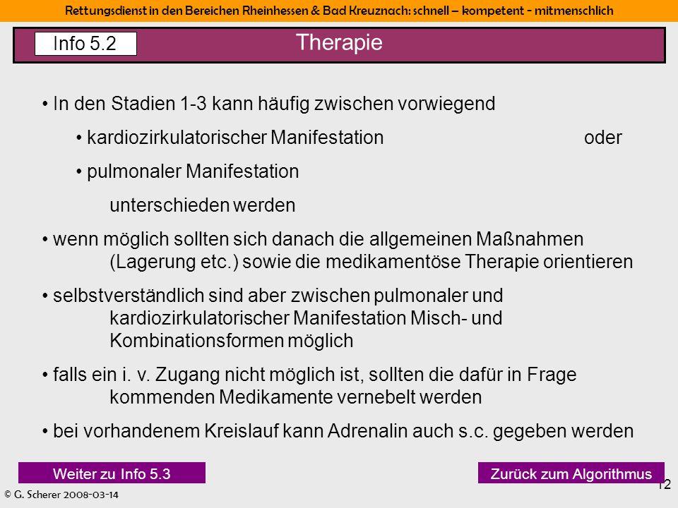 Rettungsdienst in den Bereichen Rheinhessen & Bad Kreuznach: schnell – kompetent - mitmenschlich © G. Scherer 2008-03-14 12 Therapie Info 5.2 In den S