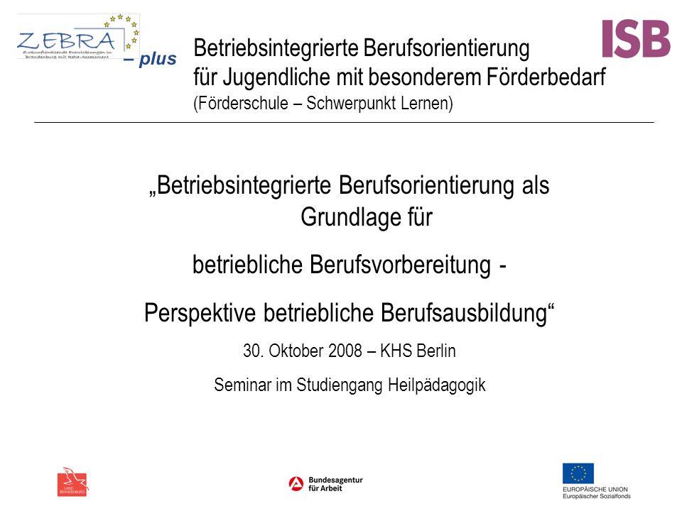 Betriebsintegrierte Berufsorientierung für Jugendliche mit besonderem Förderbedarf (Förderschule – Schwerpunkt Lernen) Betriebsintegrierte Berufsorien