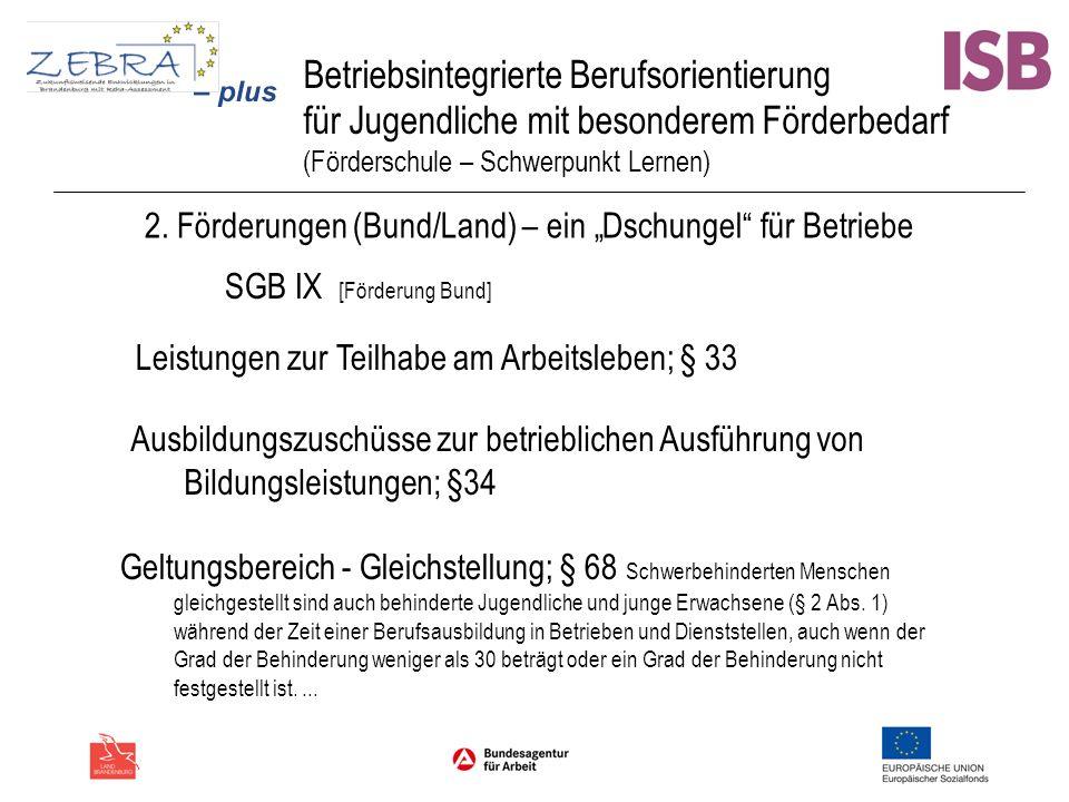 Betriebsintegrierte Berufsorientierung für Jugendliche mit besonderem Förderbedarf (Förderschule – Schwerpunkt Lernen) 2. Förderungen (Bund/Land) – ei