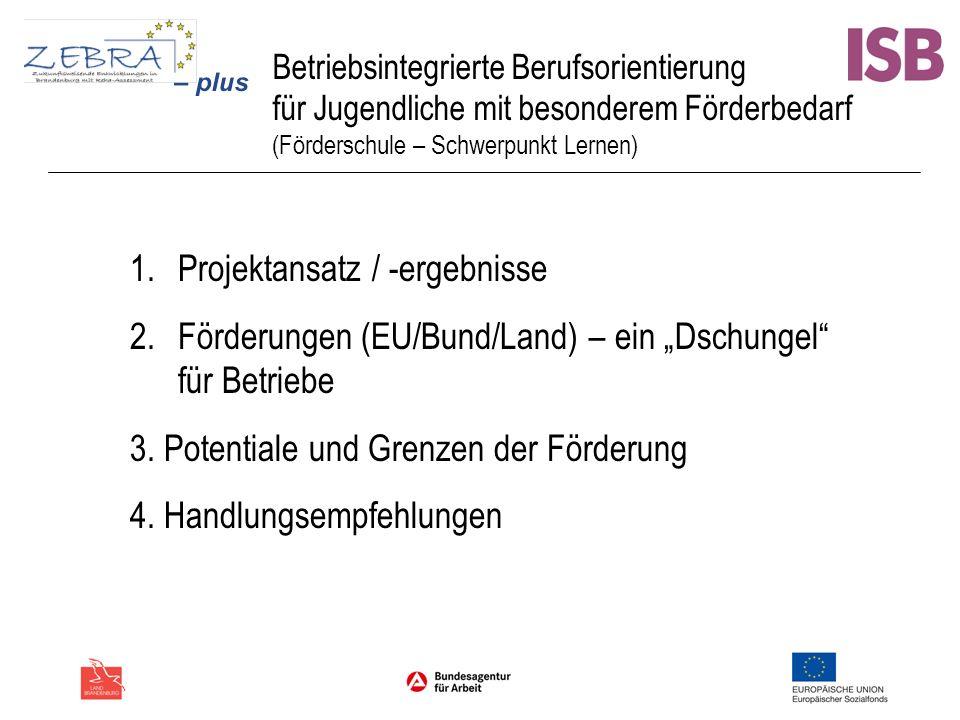 Betriebsintegrierte Berufsorientierung für Jugendliche mit besonderem Förderbedarf (Förderschule – Schwerpunkt Lernen) 1.Projektansatz / -ergebnisse 2