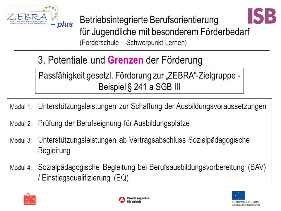 Betriebsintegrierte Berufsorientierung für Jugendliche mit besonderem Förderbedarf (Förderschule – Schwerpunkt Lernen) 3. Potentiale und Grenzen der F
