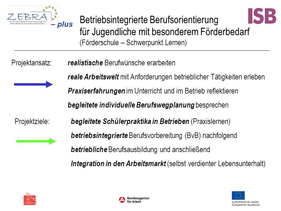 Betriebsintegrierte Berufsorientierung für Jugendliche mit besonderem Förderbedarf (Förderschule – Schwerpunkt Lernen) Projektansatz: realistische Ber