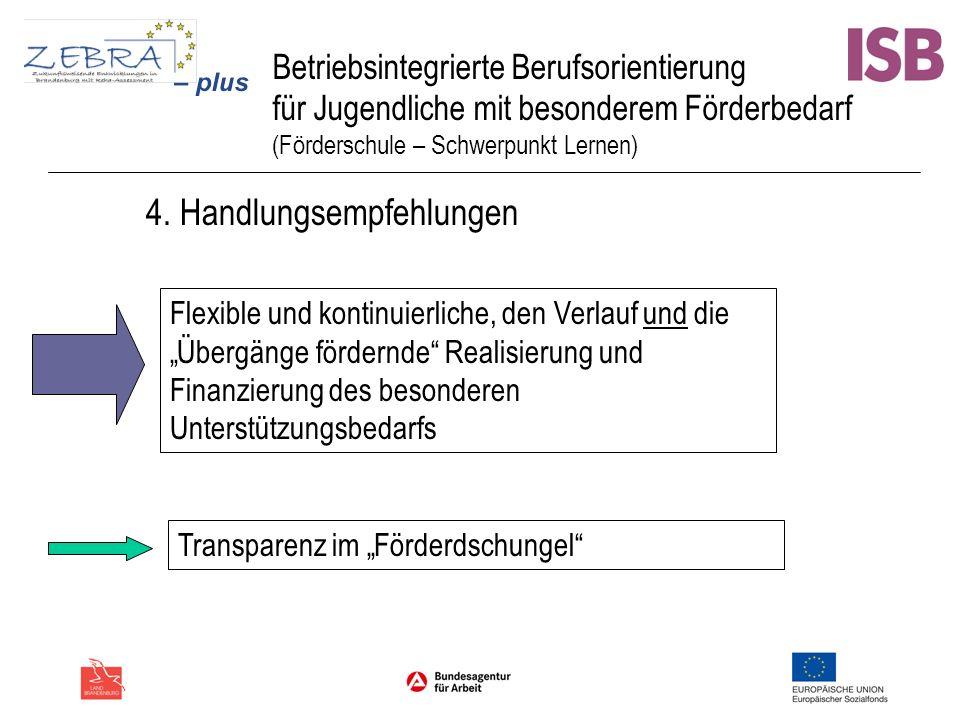 Betriebsintegrierte Berufsorientierung für Jugendliche mit besonderem Förderbedarf (Förderschule – Schwerpunkt Lernen) 4. Handlungsempfehlungen Flexib