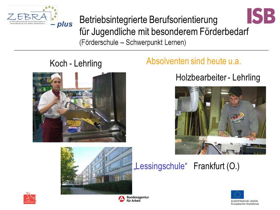 Betriebsintegrierte Berufsorientierung für Jugendliche mit besonderem Förderbedarf (Förderschule – Schwerpunkt Lernen) Lessingschule Frankfurt (O.) Ab