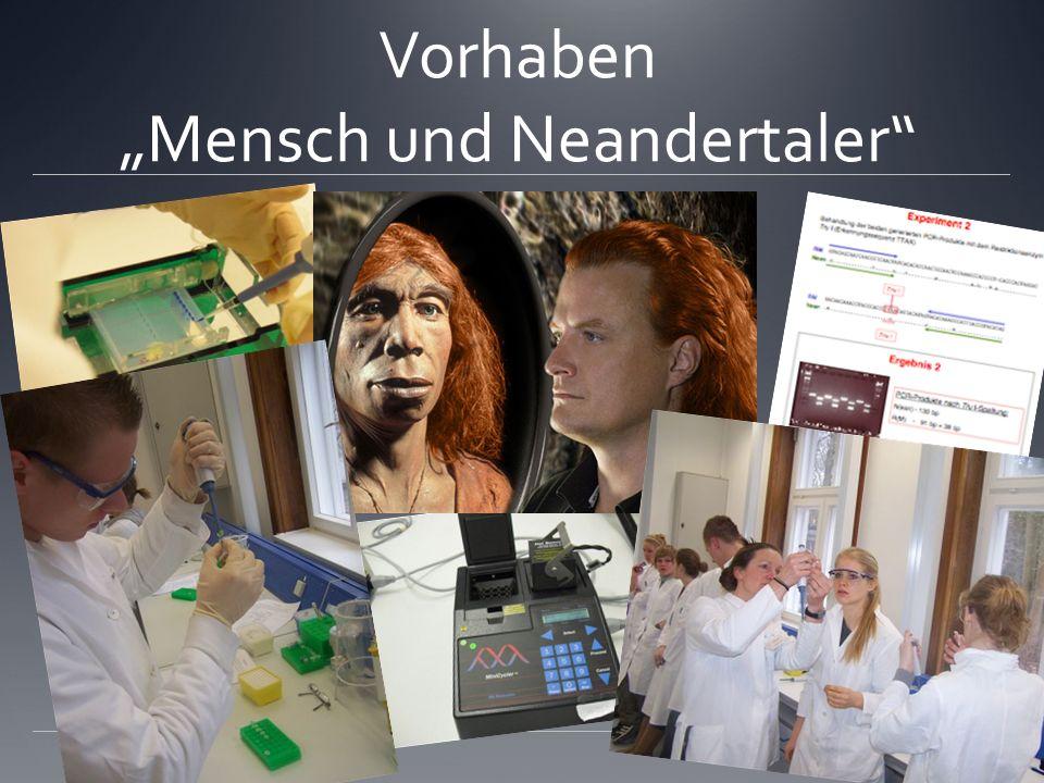 Vorhaben Mensch und Neandertaler