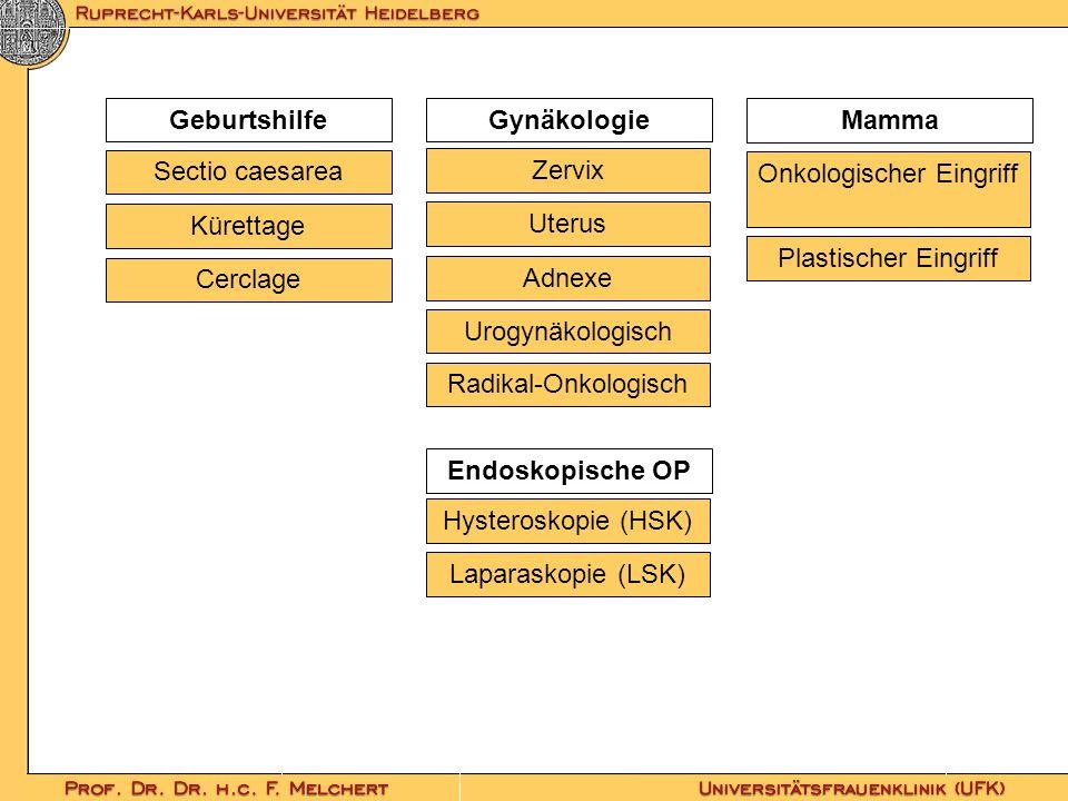 Geburtshilfe Mamma Gynäkologie Adnexe Urogynäkologisch Radikal-Onkologisch Sectio caesarea Kürettage Cerclage Zervix Uterus Endoskopische OP Hysterosk