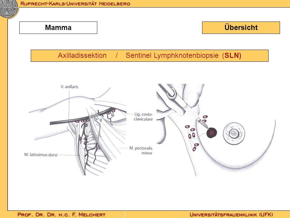ÜbersichtMamma Axilladissektion / Sentinel Lymphknotenbiopsie (SLN)