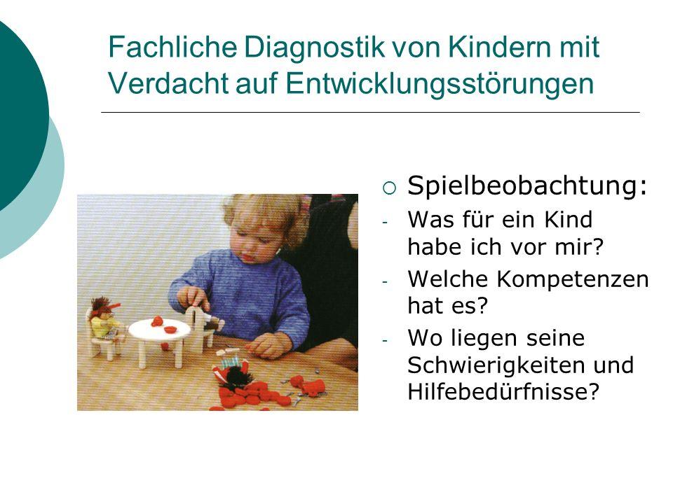 Fachliche Diagnostik von Kindern mit Verdacht auf Entwicklungsstörungen Spielbeobachtung: - Was für ein Kind habe ich vor mir? - Welche Kompetenzen ha