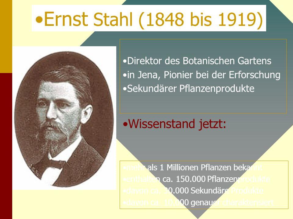 Direktor des Botanischen Gartens in Jena, Pionier bei der Erforschung Sekundärer Pflanzenprodukte mehr als 1 Millionen Pflanzen bekannt enthalten ca.